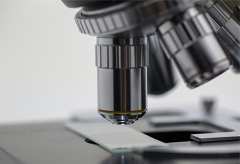 Lab & Science